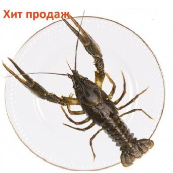 Рак королевский живой (100-200 гр.)
